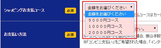 セディナカードJiyu!da!の申込時のリボ払い設定欄